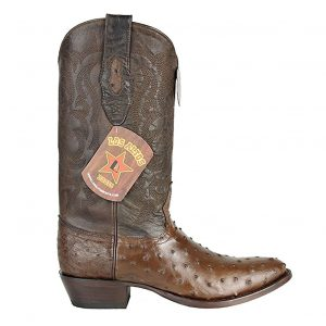 Los Altos Full Quill Ostrich Brown
