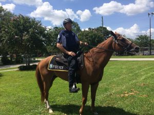 Pinellas Park Mounted patrol