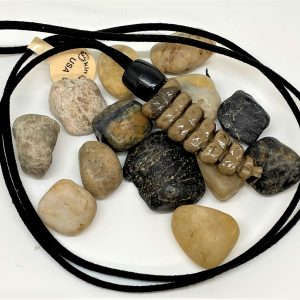 Genuine Rattlesnake rattler necklace