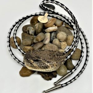 Rattlesnake Head Bolo Tie